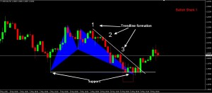 USDCAD bullish shark analysis
